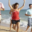 Group Of Friends Enjoying Beach Holiday — Stock Photo #4842594