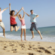 Group Of Friends Enjoying Beach Holiday — Stock Photo #4842602