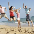 Stock Photo: Group Of Friends Enjoying Beach Holiday