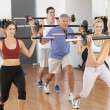 图库照片: Group Of Lifting Weights In Gym