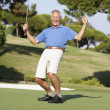 Senior Male Golfer On Golf Course Putting On Green - Stock Photo
