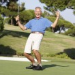 Senior Male Golfer On Golf Course Putting On Green — Lizenzfreies Foto