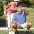 Foto Stock: Senior Couple Golfing On Golf Course Lining Up Putt On Green