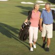 senior couple walking entlang golfplatz carrying bags — Stockfoto #4843110