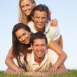 Two, young couples posing on a field — Stock Photo #4843402
