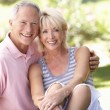 Senior couple relaxing together in park — Stockfoto #4843561