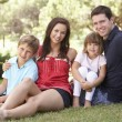 Portrait Of Young Family Relaxing In Park — Stock Photo