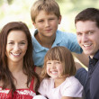 Portrait Of Young Family Relaxing In Park - Stock Photo