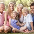Family, with parents, children and grandparents, relaxing in a — Stock Photo #4843666