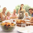 A family, with parents, children and grandparents, enjoy a picni — Stock Photo #4843673