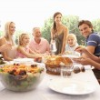 A family, with parents, children and grandparents, enjoy a picni - Stock Photo