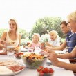 Extended family, parents, grandparents and children, eating outd - Foto Stock