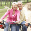 Senior couple riding bicycle in park — ストック写真