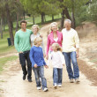 Three Generation Family enjoying walk in park - Stock Photo
