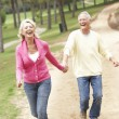 Senior Couple enjoying walk in park — Stok fotoğraf