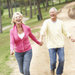 Senior Couple enjoying walk in park — Stockfoto