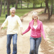 Senior Couple enjoying walk in park — Stock Photo