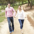 Couple enjoying walk in park — Stock Photo #4844088