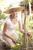 Senior Woman Relaxing In Garden — Stock Photo