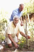 Senior Man And Adult Son Relaxing In Garden — Stock Photo