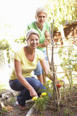 Mother And Teenage Son Relaxing In Garden — Stock Photo