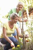 Madre e hijo adolescente relajante en jardín — Foto de Stock