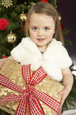 Young Girl Holding Christmas Present In Front Of Christmas Tree — Стоковое фото