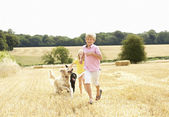 Boy With Dogs Running Through Summer Harvested Field — Stock Photo