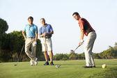 组的男性高尔夫球手上高尔夫球场准备开球 — 图库照片