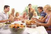 A family, with parents, children and grandparents, enjoy a picni — Foto de Stock