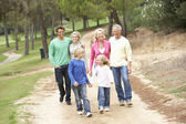 Three Generation Family enjoying walk in park — Stock Photo