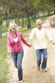 Senior couple enjoying spaziergang im park — Stockfoto