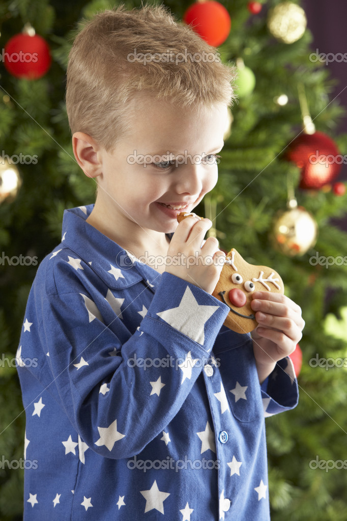 Boy eating cokie in front of christmas tree — Stockfoto #4840898