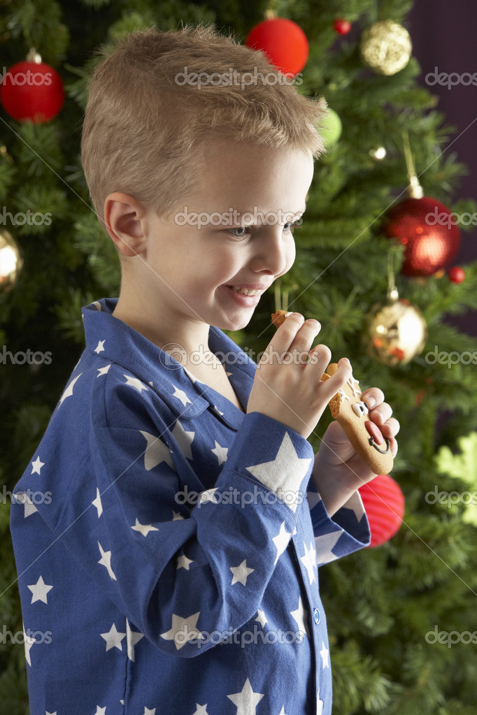 Boy eating cokie in front of christmas tree — Photo #4840900