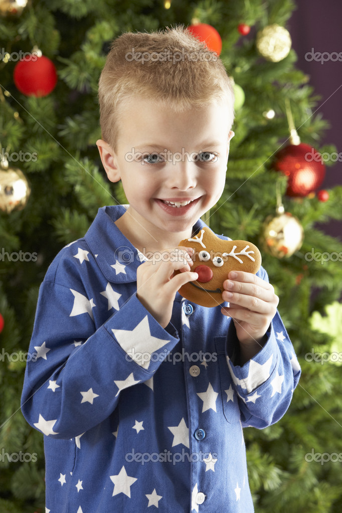 Boy eating cokie in front of christmas tree — Photo #4840901