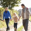 Stock Photo: Young family walking in park