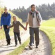 Young family walking in park - Foto Stock