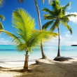 Caribbean sea and coconut palms — Stock Photo
