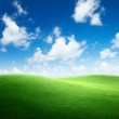 Field of green grass and blue sky — Stock Photo #4492642