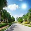 Road in tropical garden — Stok fotoğraf