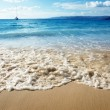 Sand of beach caribbean sea — Stock Photo #4492797