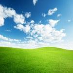 campo de hierba y cielo del atardecer perfecto — Foto de Stock