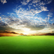 Field of grass and perfect sunset sky — Stock Photo