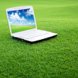 Stock Photo: Notebook on the green field