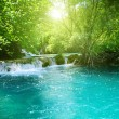 Waterfall in deep forest — Stock Photo #4494568