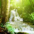 Waterfall in deep forest — Stock Photo #4494570