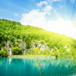 Lake in deep mountain forest — Stock Photo #4494573
