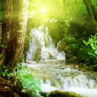 Waterfall in deep forest — Stock Photo #4494629