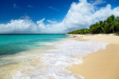 Beach of Catalina island, Dominican republic — Stock Photo