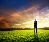 Young businessman on green field and sunset — Stock Photo